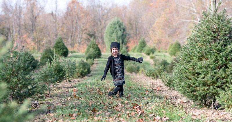 Calvert County Family Photographer | Christmas Tree Farm Minis